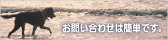 港町神戸こだわり賃貸-お問合せは簡単
