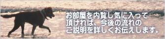 港町神戸こだわり賃貸-お部屋を内覧し気に入って頂いた後詳細のご説明